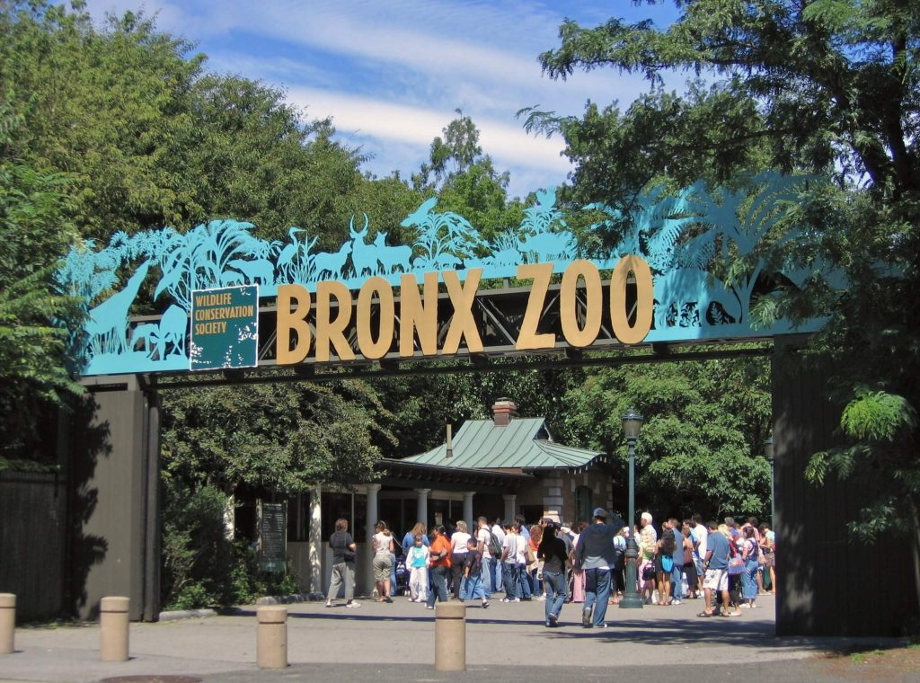 Bronx Zoo Parking Guide 2021 How To Save Money